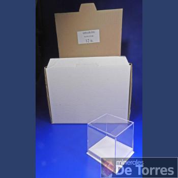 Urna de plástico PVC de 6 cm. 12 unidades.