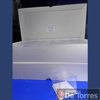 Urna de plástico PVC de 6 cm. 48 unidades.
