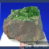 Torbernita